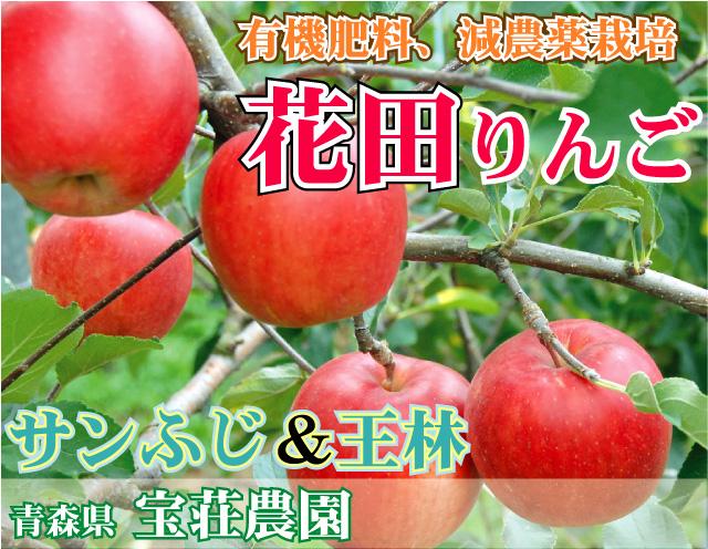有機肥料使用、減農薬栽培のうまい花田りんご