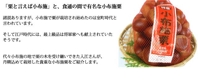 「栗と言えば小布施」と、食通の間で有名な小布施栗<br />
