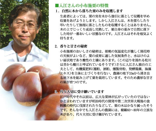 入江さんの小布施栗の特徴