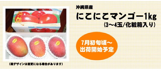 沖縄県産にこにこマンゴー1kg。7月初旬より出荷予定、ただいまご予約受付中です。