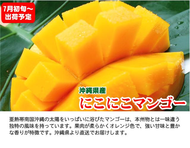 沖縄県産にこにこマンゴー。7月初旬より出荷予定です。