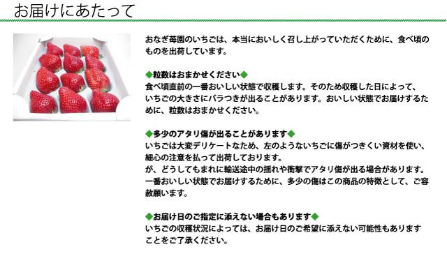 おなぎ苺園のいちごは、本当においしく召し上がっていただくために、食べ頃のものを出荷しています。