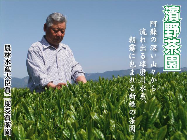 阿蘇の深い山々から流れ出る球磨川水系、朝霧に包まれる新緑の濱野茶園で作られるお茶「栞織しおり」