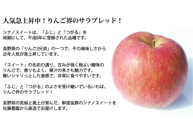 人気急上昇中!りんご界のサラブレッド!長野県産シナノスイート!