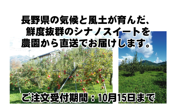 長野県の気候と風土が育んだ、<br /> 鮮度抜群のシナノスイートを農園から直送でお届けします。