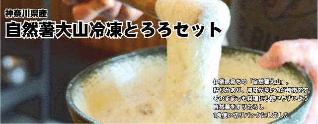 伊勢原育ちの「自然薯大山」。粘りがあり、風味が良いのが特徴です。そのままでも料理にも使いやすいよう自然薯をすりおろし、1食使い切りパックにしました。